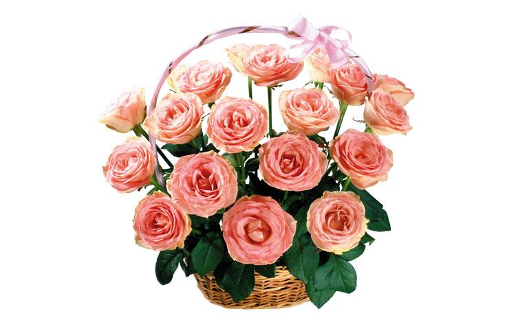 Букеты розовых роз