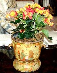 Комнатные розы в интерьере гостиной