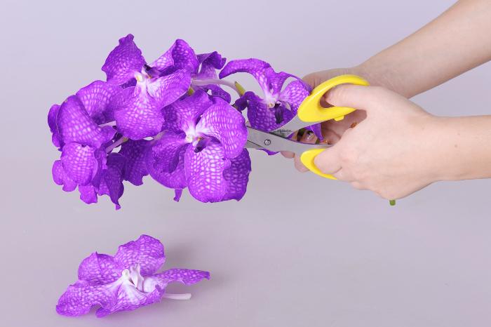 Новогодняя композиция из орхидеи