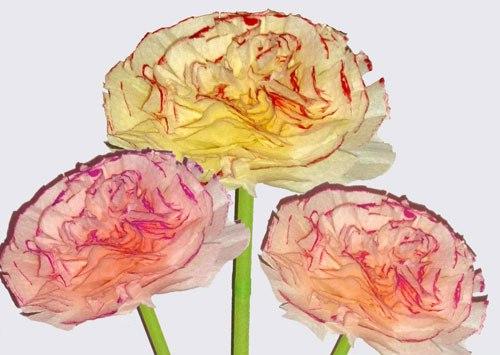 Поделки Цветы из бумажных салфеток своими руками