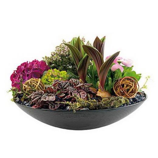 композиция цветы в плошке