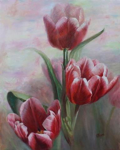 Живопись цветов: Red and White Tulips
