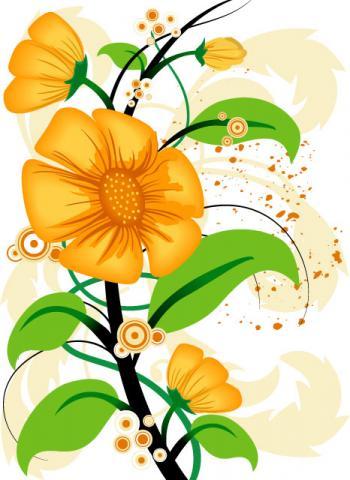 Рисунки и картинки цветов