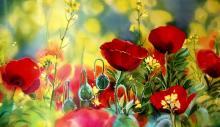 Живопись цветы: Маки. Художник: Друзенко Ирина