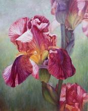 Живопись цветы: Lilies