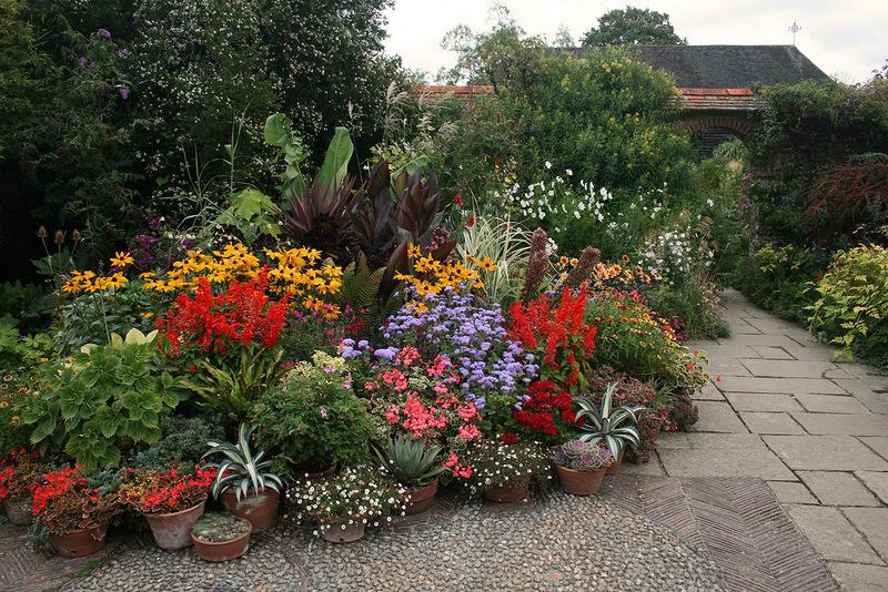 Дизайн садов фото